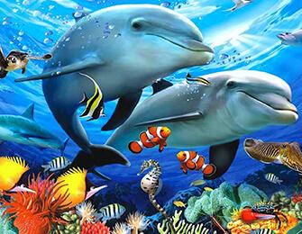 Hangi Deniz Hayvanısın?